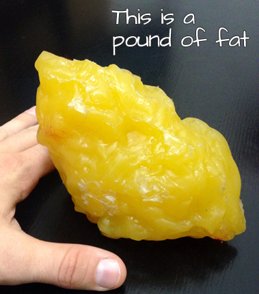 "That's what a pound of fat looks like. Just 1 special method inside Total  Six Pack Abs that you won't find anywhere else is called ""THE FAT FLUSH""."